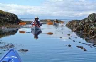 Discovery Island Kayak 2 _ JV