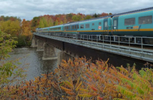 Via Rail Corridor - fall colours - Via Rail