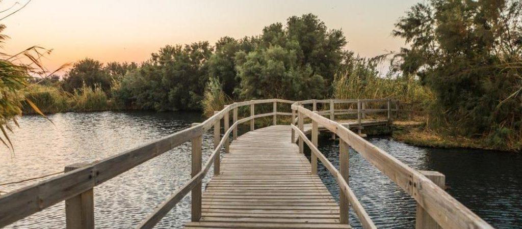 Azraq Wetland bridge 2