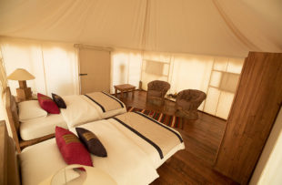Discovery Bedu Camp room