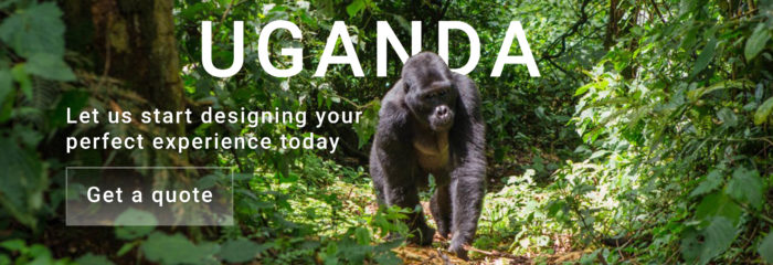 10 Days in Uganda get a quote