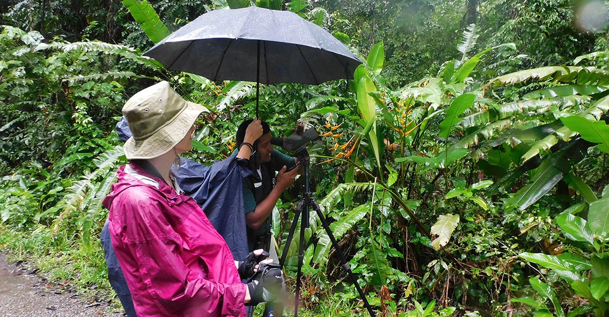 Manuel Antonio Costa Rica Jungle Trek