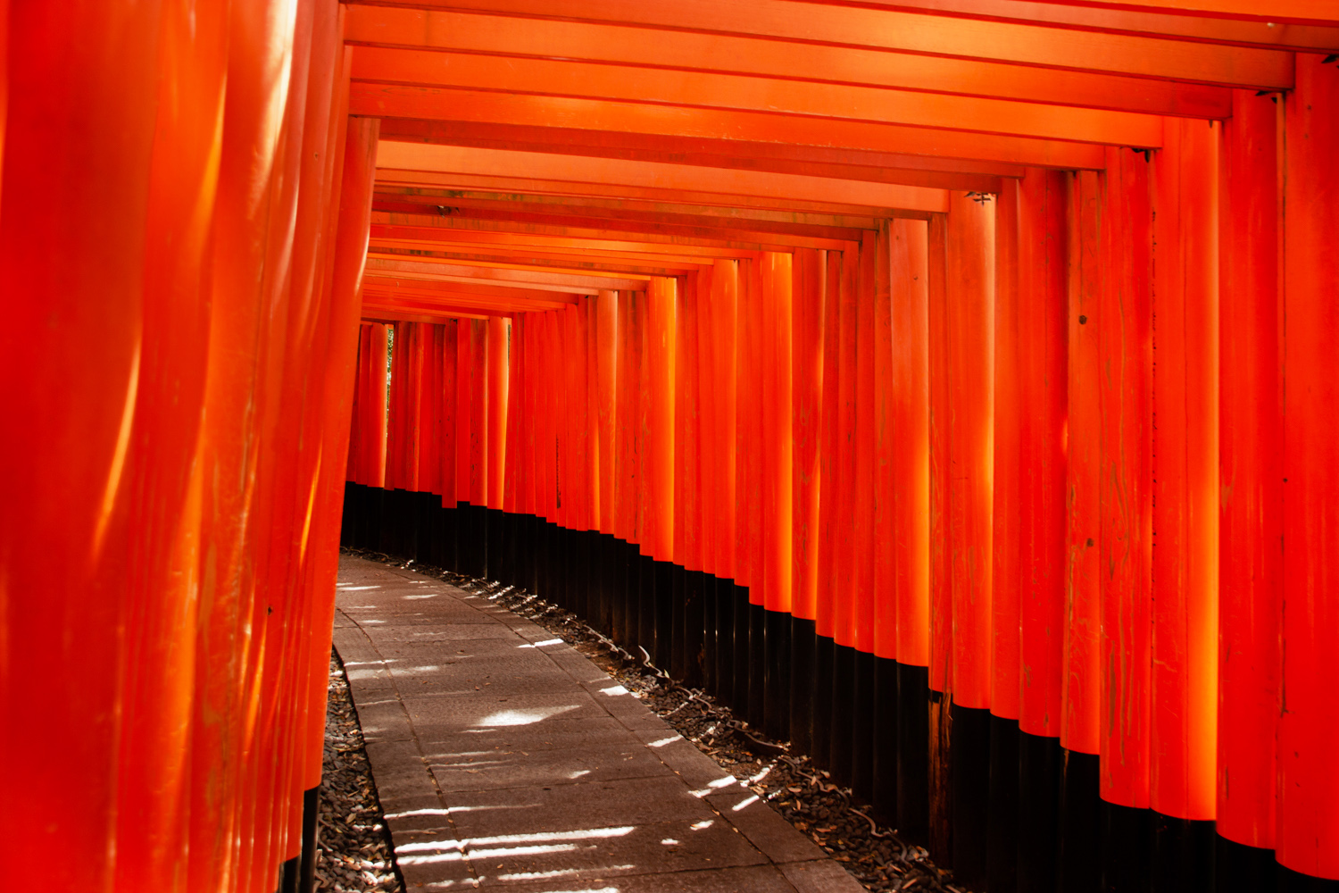 Japan Fushimi Inari shrine kyoto
