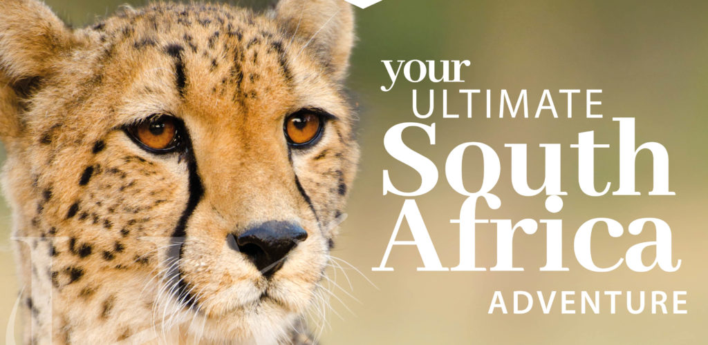 Your ultimate south africa itinerary header_header build