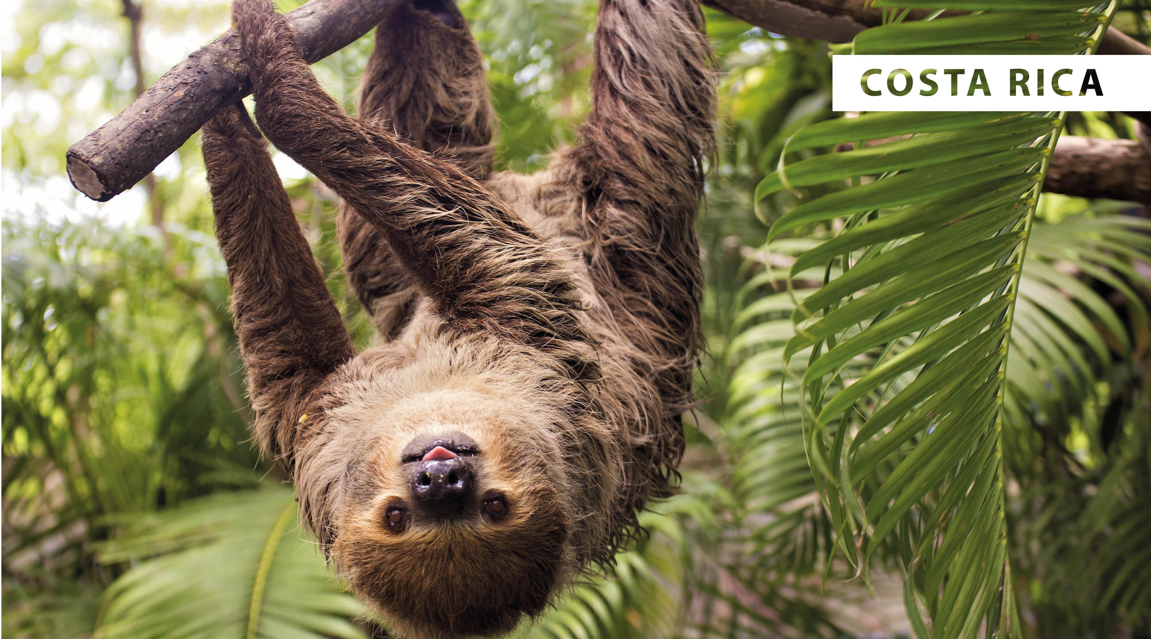 World Wildlife Day 2021 - blog2