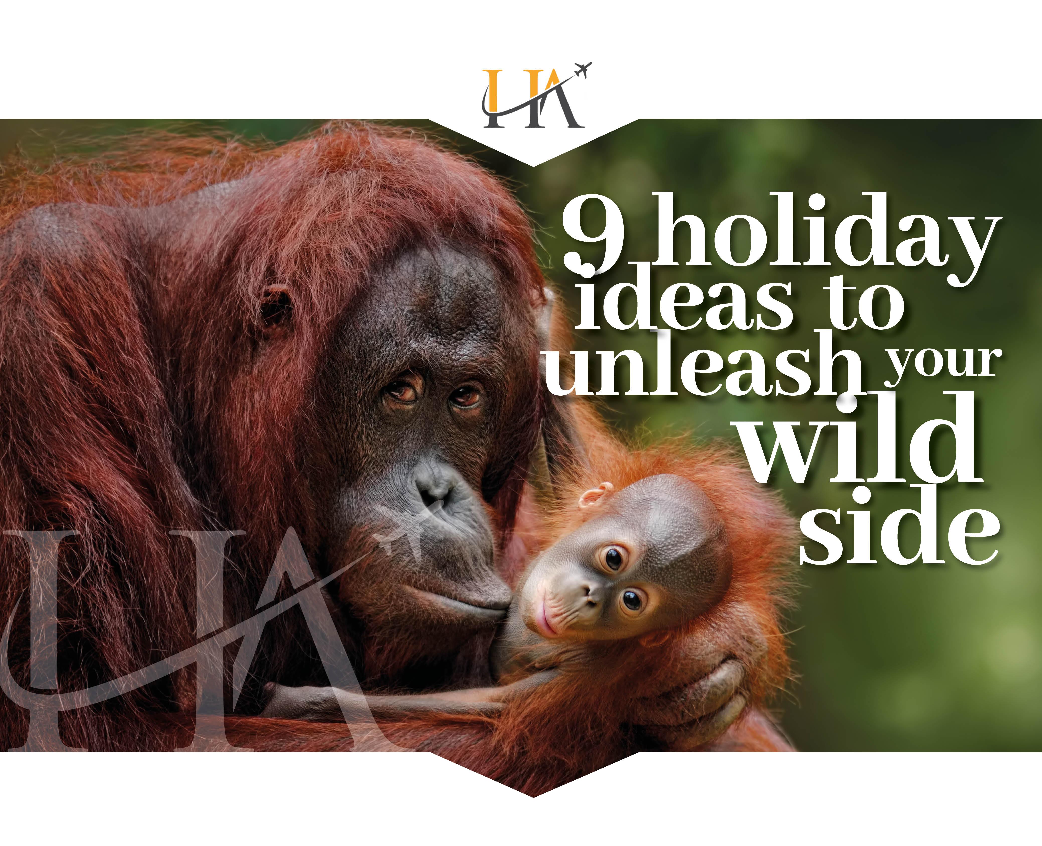 World Wildlife Day_blogheader build