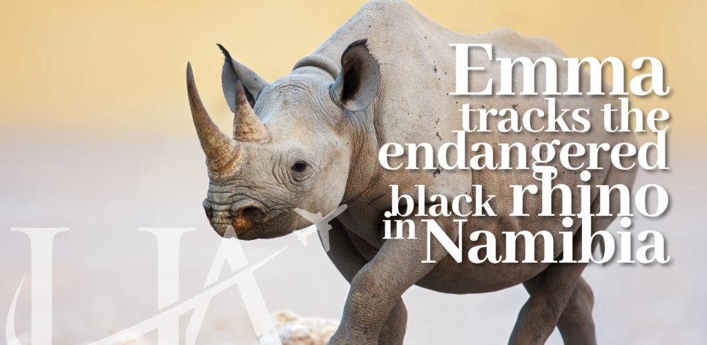 Emma tracks black rhino in Namibia