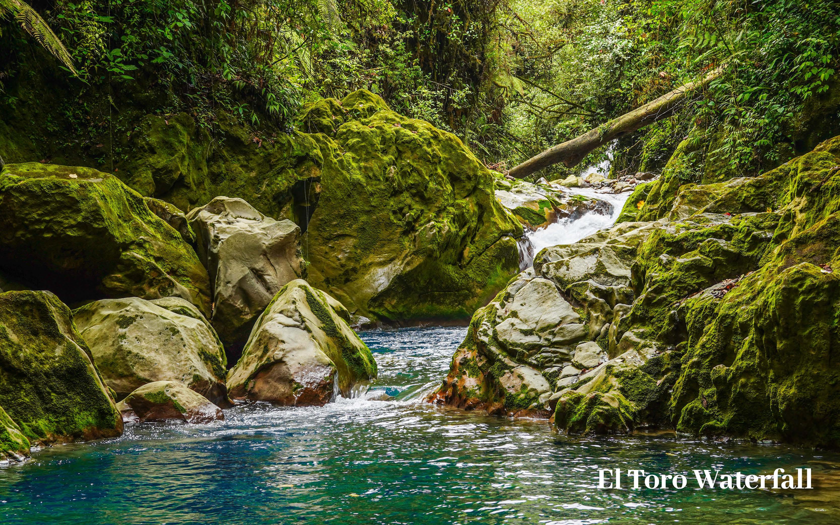 COSTA RICA HOLIDAY OFFER EL TORO WATERFALL