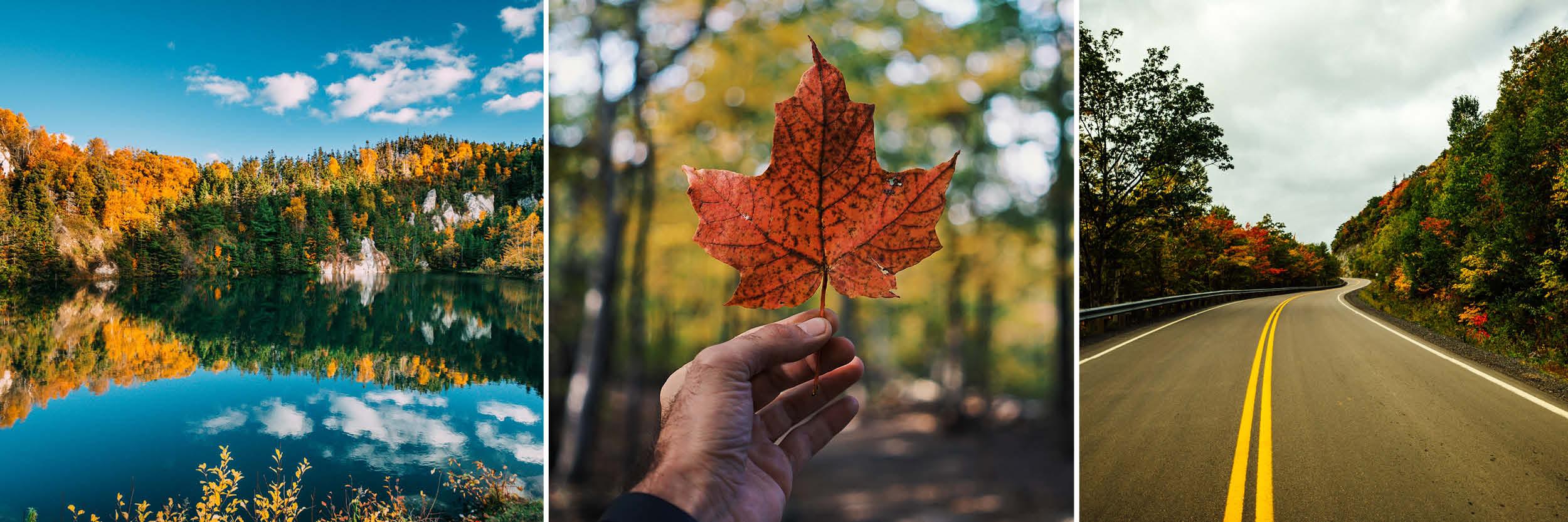 Canada holiday autumn colours
