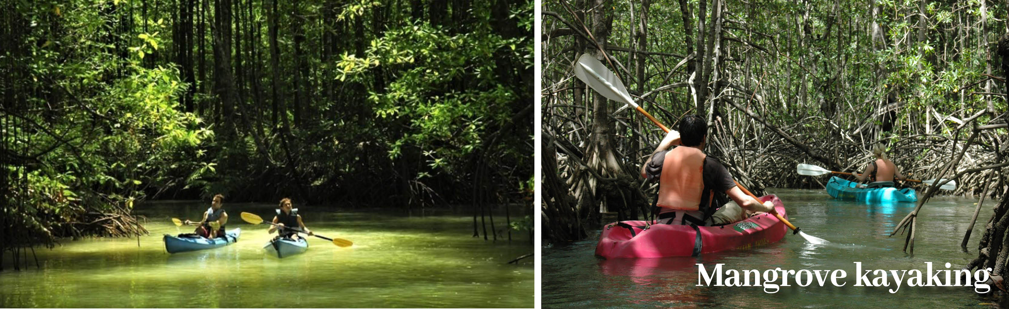 Costa Rica Holiday Offer excursions - Mangrove Kayaking