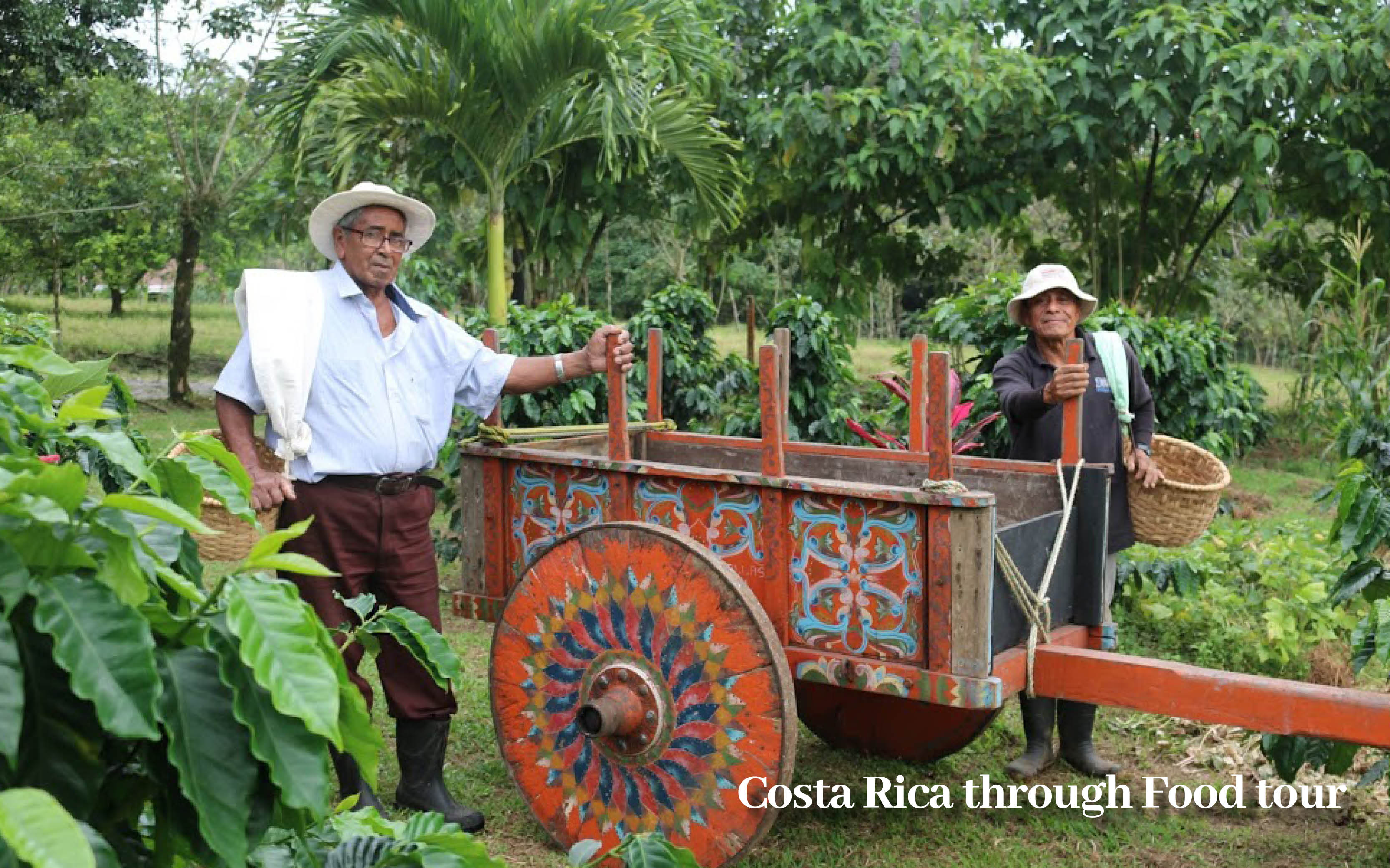 Costa Rica holiday offer food tour