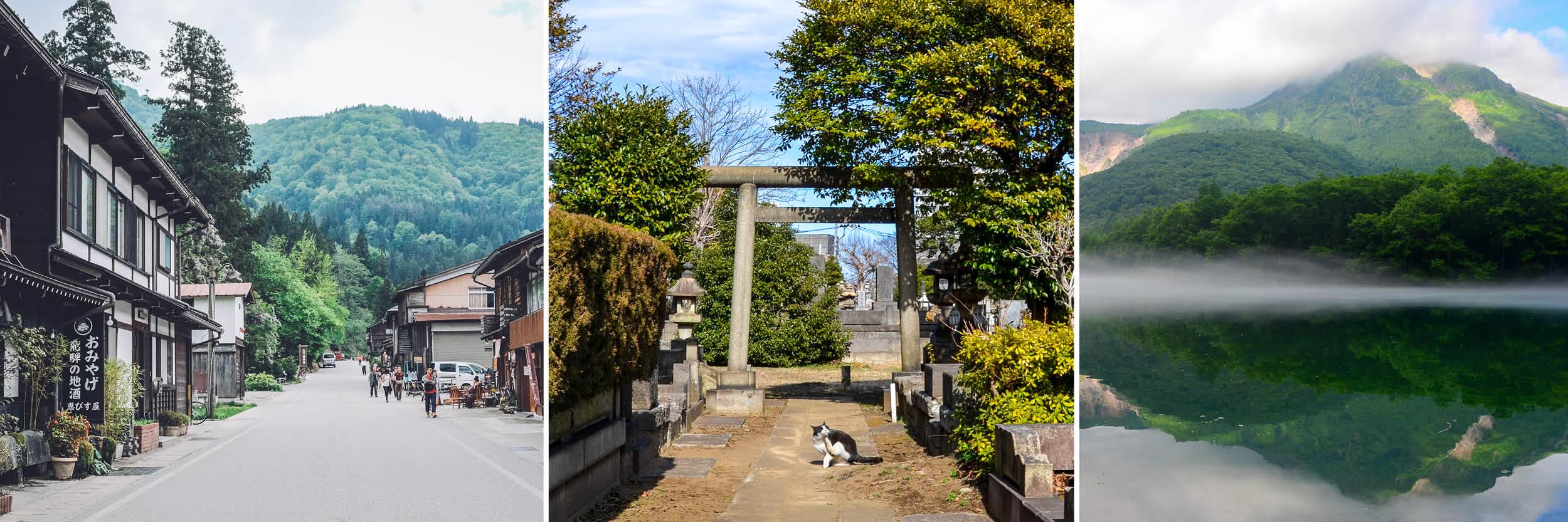 Japan best travel books