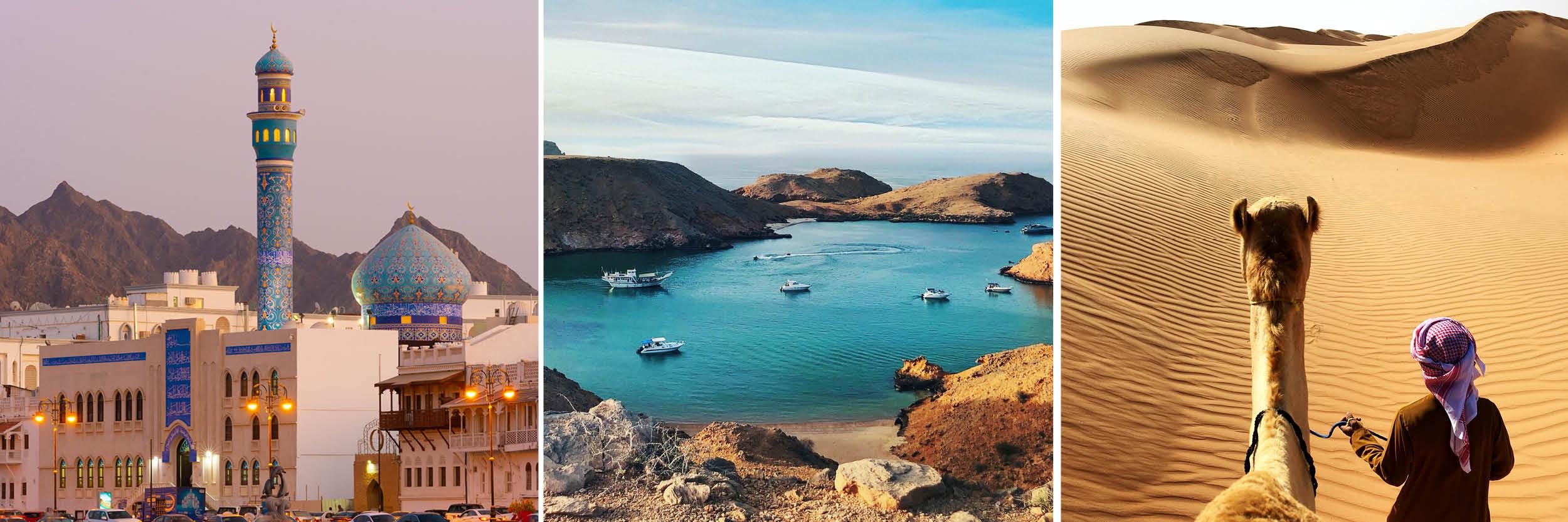 Oman best  travel books