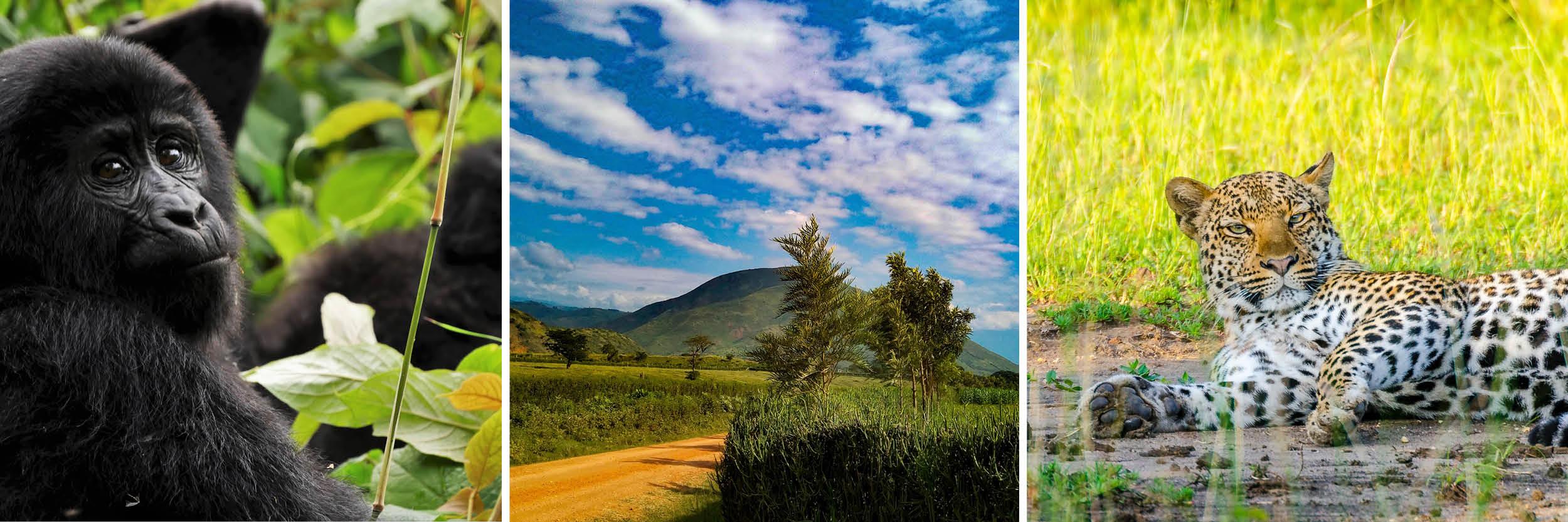 Africa best travel books