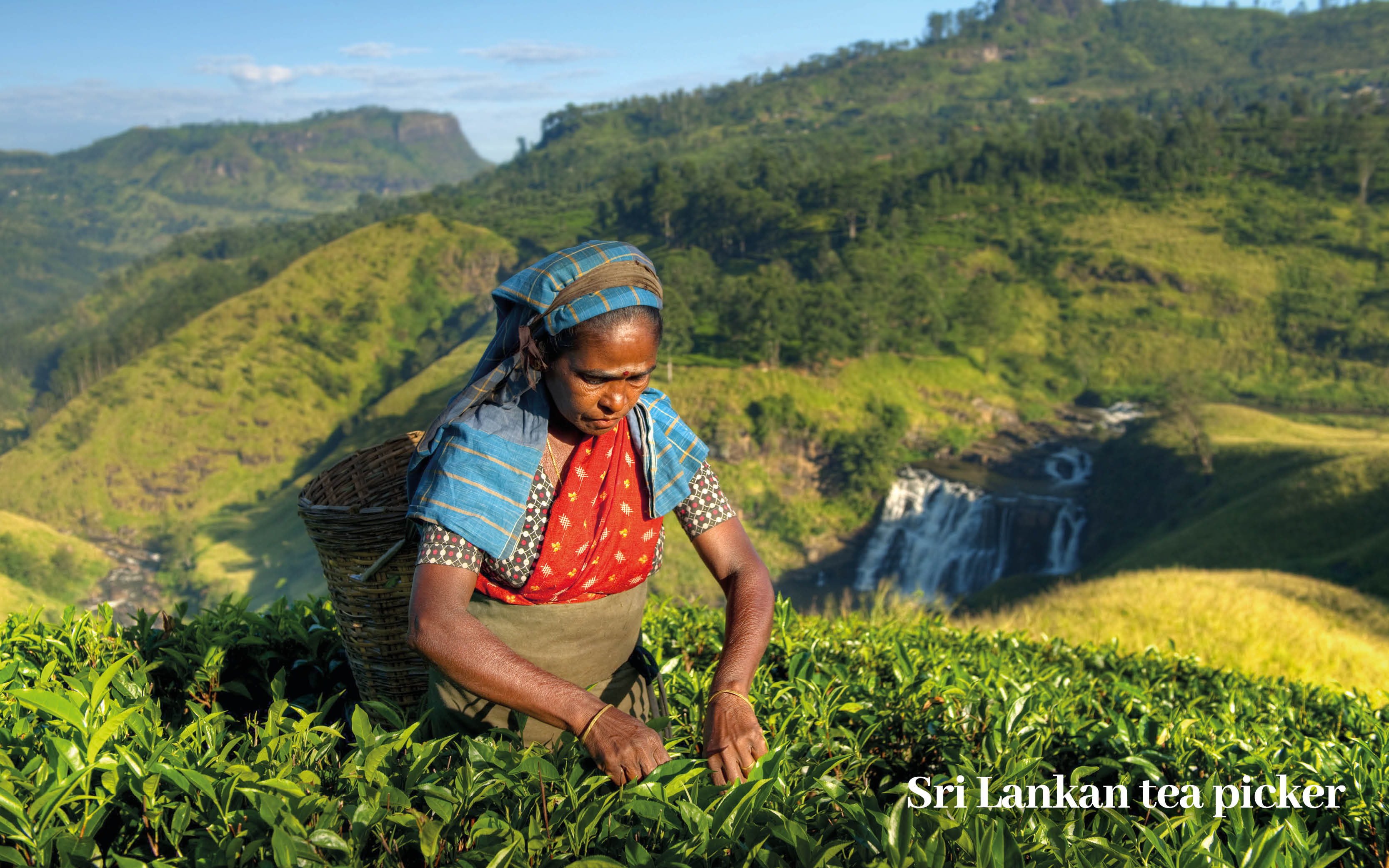 Classic Sri Lanka Holiday Offer blog images12