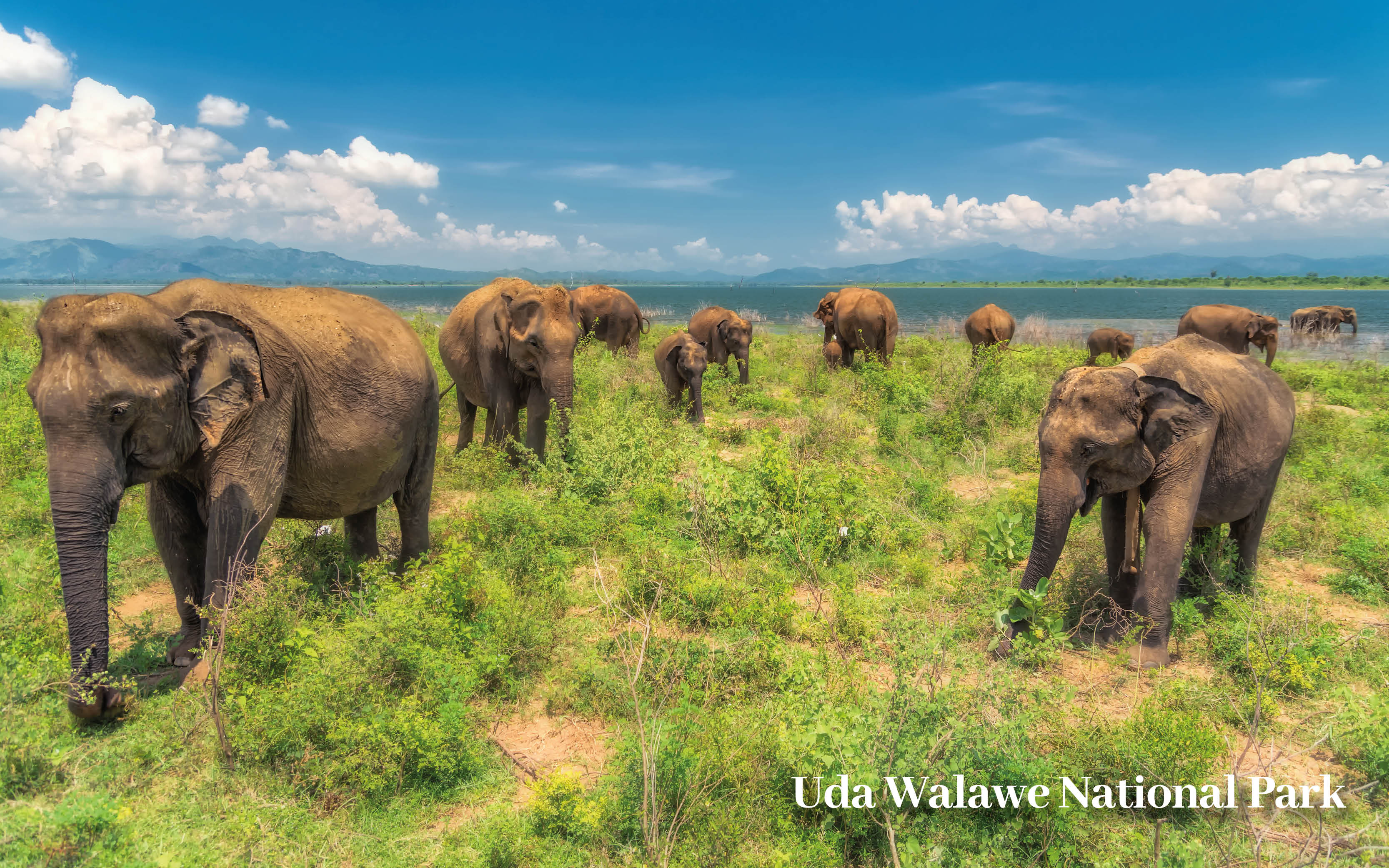 Classic Sri Lanka Holiday Offer blog images20