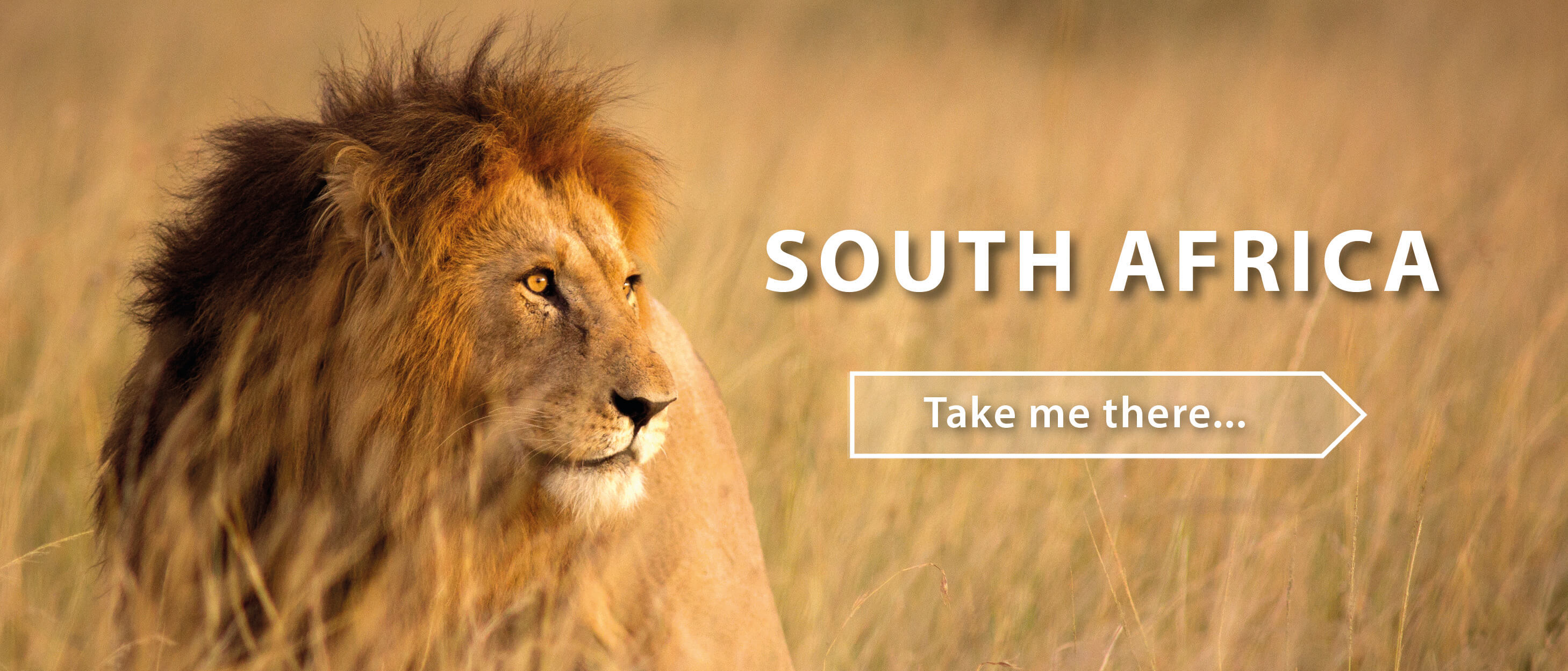 South Africa with HA